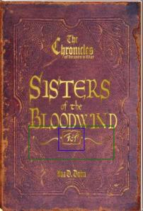 Sisters w-trademark symbol shared1